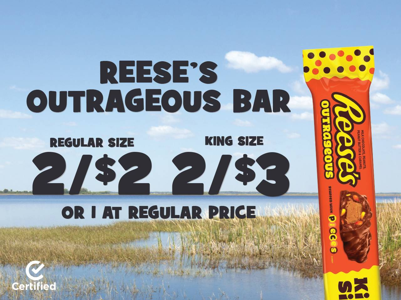 Reese's Outrageous Bar 2 Reg. Size for $2, 2 King Size for $3, or 1 at Regular Price